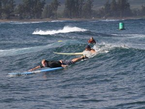 7 Day Beautiful North Shore Surf Camp in Oahu, Hawaii