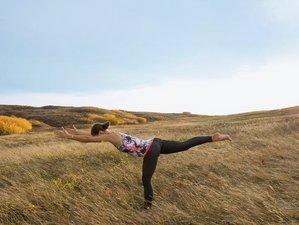 6 Days Meditation and Slow Flow Hatha Yoga Retreat in Transylvania, Romania