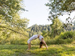 8 jours de hatha yoga traditionnel dans le Beaujolais à Saint-Just-d'Avray, Rhône