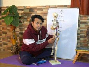 15 Day 15-Hour Online Anatomy of Yoga Teacher Training Series With Rishikesh Yogkulam