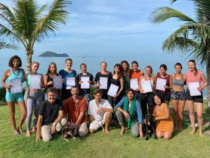 22 Day 200-Hour Luxury Oceanfront Vinyasa Yoga Teacher Training in Koh Phangan