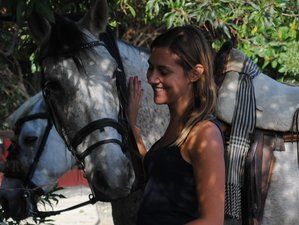 5 Day Heal and Balance, Horseriding, Yoga, Coaching and Mindfulness  Holiday in Malaga
