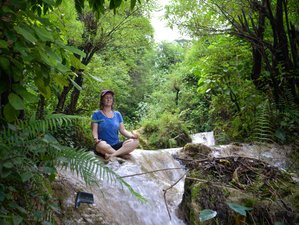 7 Day Waterfall Hiking and Sightseeing Yoga Holiday in Rishikesh