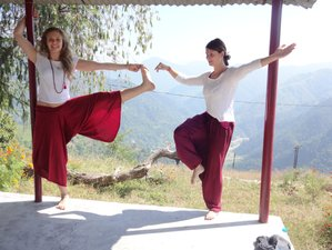 28 Days 200hr Hatha Yoga Teacher Training in Rishikesh