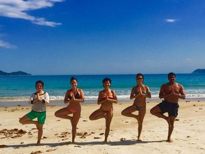 10 Days Island Discovery Yoga Retreat in Brazil