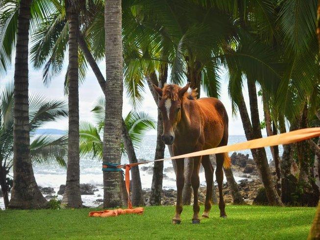 8 jours en stage de yoga et reiki au Costa Rica