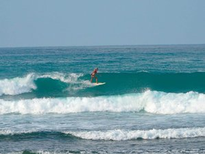 8 Day Beginner and Intermediate Surf Camp in Ahangama, Southern Province