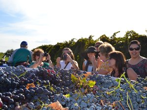 7 Days Cultural, Saint Patron Celebrations, and Grape Harvest Culinary Experience in Abruzzo, Italy