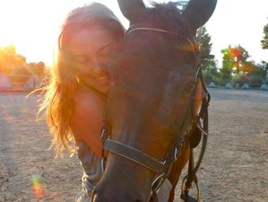 7 Days Yoga, Photography, and Horse Riding in Greece