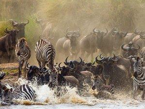 8 Days Serengeti Wildebeest Migration and Mara River Crossing Safari in Tanzania