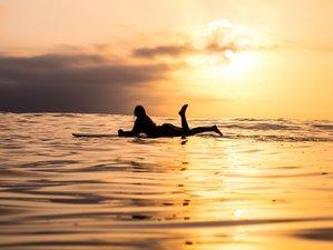 8 Day Powerful Surf Package: The Vegan Surf 'n' Yoga Retreat in Fuerteventura