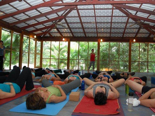 5 Tage Grundlagen des Yoga Urlaub in Guanacaste, Costa Rica