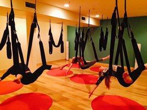 3 Day 15-Hour Intermediate Aerial Yoga Play Teacher Training in Haiku, Hawaii