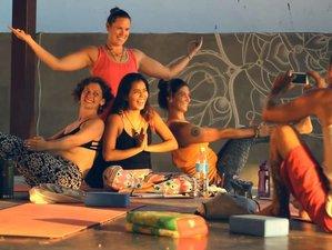 22 Days Pre-Vipassana Yoga Course in Koh Phangan, Thailand
