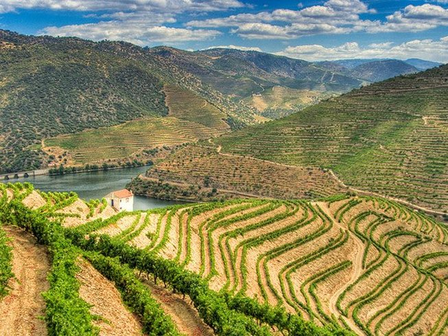 9 Days Culinary Vacations & Wine Tasting Portugal