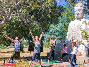 4 Days Digital Detox: Disconnect to Reconnect Yoga Retreat in San Diego, USA