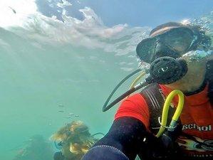 8 Day Fun Dive and Surf Camp in Caleta de Famara, Teguise