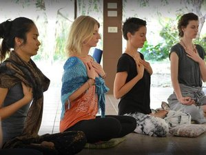 15 Day Online Foundation Course With Yoga Lifestyle and Hatha Yoga - Module 1