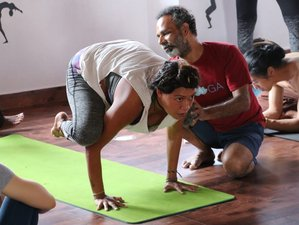 14 Days 100 Hour Blissful Hatha Yoga Teacher Training Course in Gokarna, India