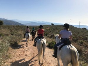 8 Day Gold Package: Luxury Self-Catering Horse Riding Holiday in Andalusia