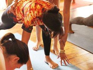 4 Days Spring Cleanse Meditation and Yoga Holiday Norfolk, UK