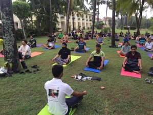 8 Days Alchemist Retreat 50hr Certified Yoga Course in India