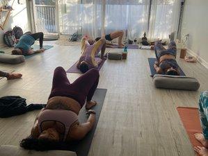 21 Tage 200-Stunden Power Yoga und Ekstatische Meditationslehrer Ausbildung in San Diego