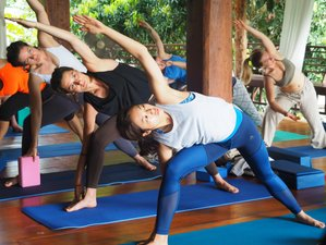 11 Days 100 Hours Hatha & Ashtanga Vinyasa Yoga Teacher Training in Chiangmai, Thailand