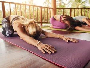 7 Day of Organic Vegan Lifestyle Education and Youthing Yoga Retreat in Montezuma, Puntarenas