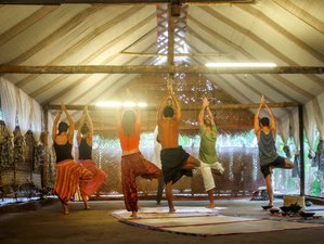 6 Day Purifying and Rejuvenating Meditation and Yoga Retreat in Kerala