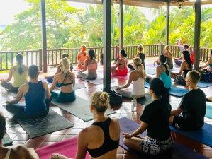 26 Days 200-Hour  Registered Yoga Alliance School Intensive Teacher Training in Koh Samui Thailand