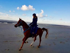 2 Day Horse Riding Holiday for All Levels in Chamant, Oise