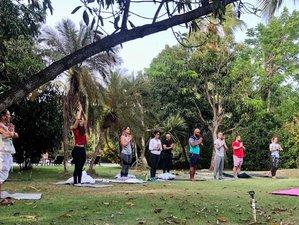 "7 Day Ayahuasca Healing Retreat in ""Paradise"" Las Terrenas DR"