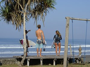 15 Day Challenging Beginner and Intermediate Surf and Stay Holiday in Medewi, Bali