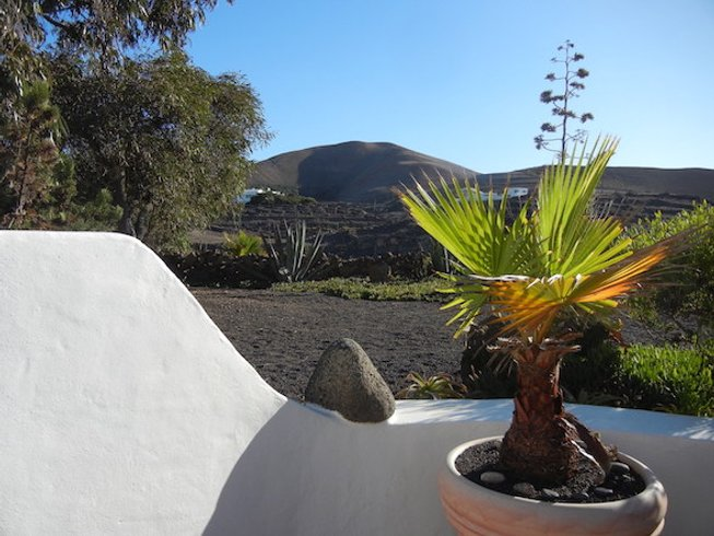 8 Days Winter Sun Yoga Retreat in Lanzarote Island, Spain