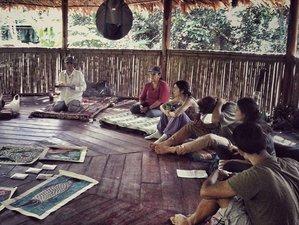 10 Days The Nature of Yoga, Meditation, and Ayahuasca Retreat in Lamas, Peru