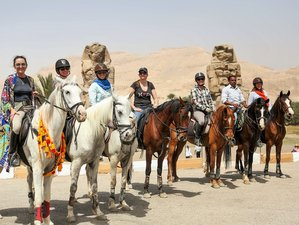 9 Days New Year Historical Tour and Horse Riding Holiday in Luxor, Egypt