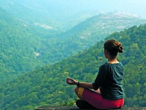 4 Days Sugati Yoga Holiday with Holistic Lifestyle Experience in Munnar, Kerala, India