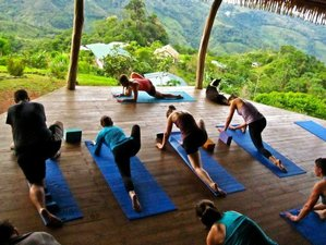 8-Daagse Gezonde Raw Food en Yoga Retraite Costa Rica