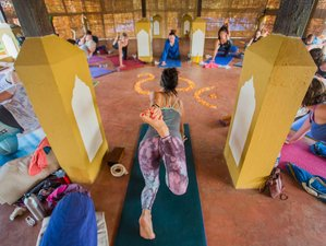 8 Day Stress-Free and Relaxing Yoga Holiday in Goa