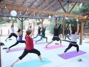 4 Days Beginning Healer's Workshop Yoga Retreat in San Diego, USA