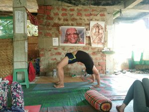 7 Days Intensive Hatha Yoga Retreat in Dharamsala, India