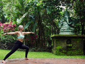 7 Day Active Adventure, Fitness, and Yoga Holiday in Playa del Coco