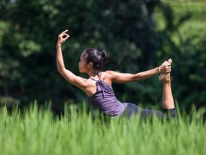 4-Daagse Ontdek Ubud Yoga Retraite in Bali, Indonesië
