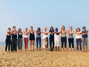 7 Day Wellness and Rejuvenation Retreat with Yoga, Ayurvedic Massages, and Meditation in Goa