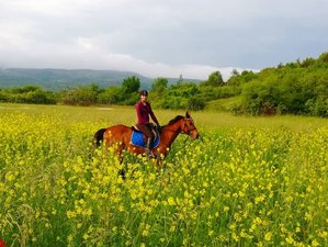 8 Day Trail Dalmatian Hinterland Mountain Horse Riding Holiday in Donje Ogorje, Muc