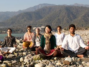28 Days 200-Hour Hatha Yoga Teacher Training in Rishikesh