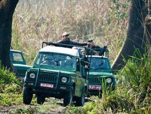 8 Day Chitwan Jungle Safari and Cultural Tour in Nepal