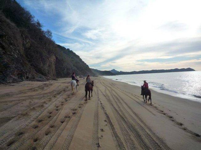7 Days Affordable Sayulita Surf Camp Mexico