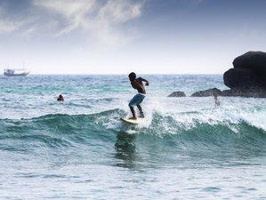 11 Tage Wunderbare Safari und Surfcamp in der Südprovinz, Sri Lanka